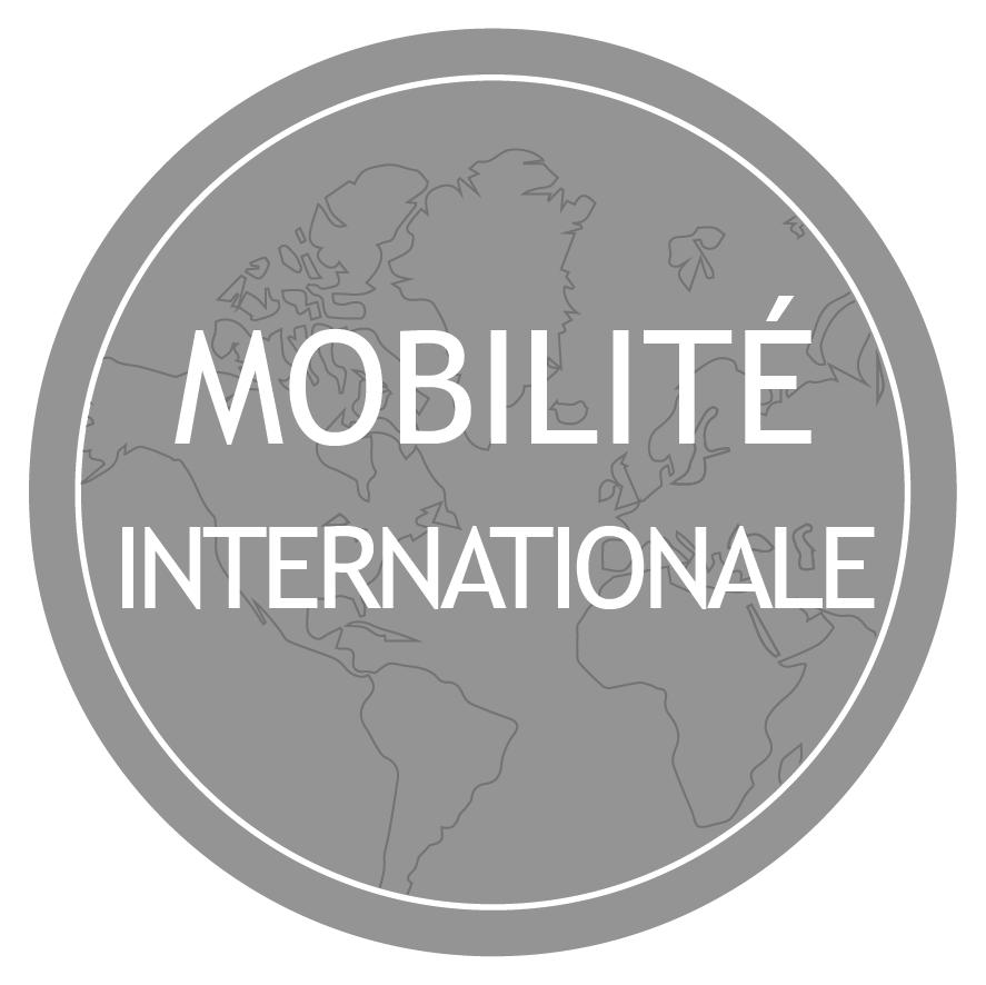 Lien vers l'espace mobilité internationale